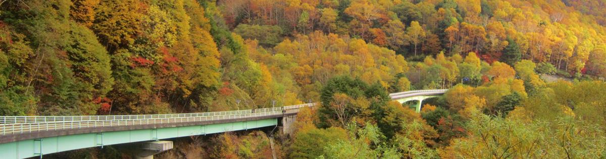 Venus Line Ochiai Bridge
