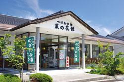 油菜花博物館