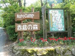 Akakura's forest (exterior)